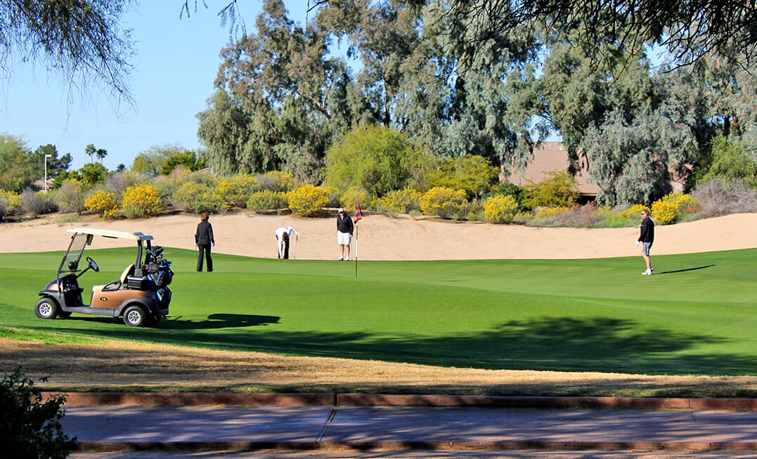 The Gold Course Scottsdale