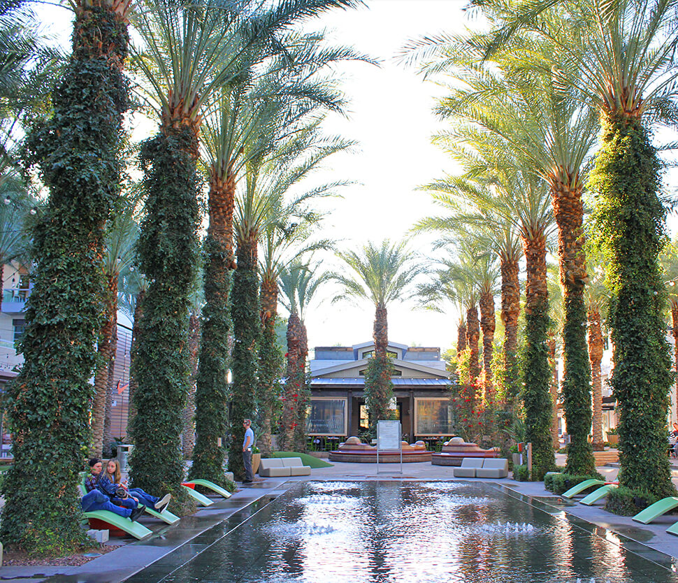 The Neighborhood Lifestyle Scottsdale