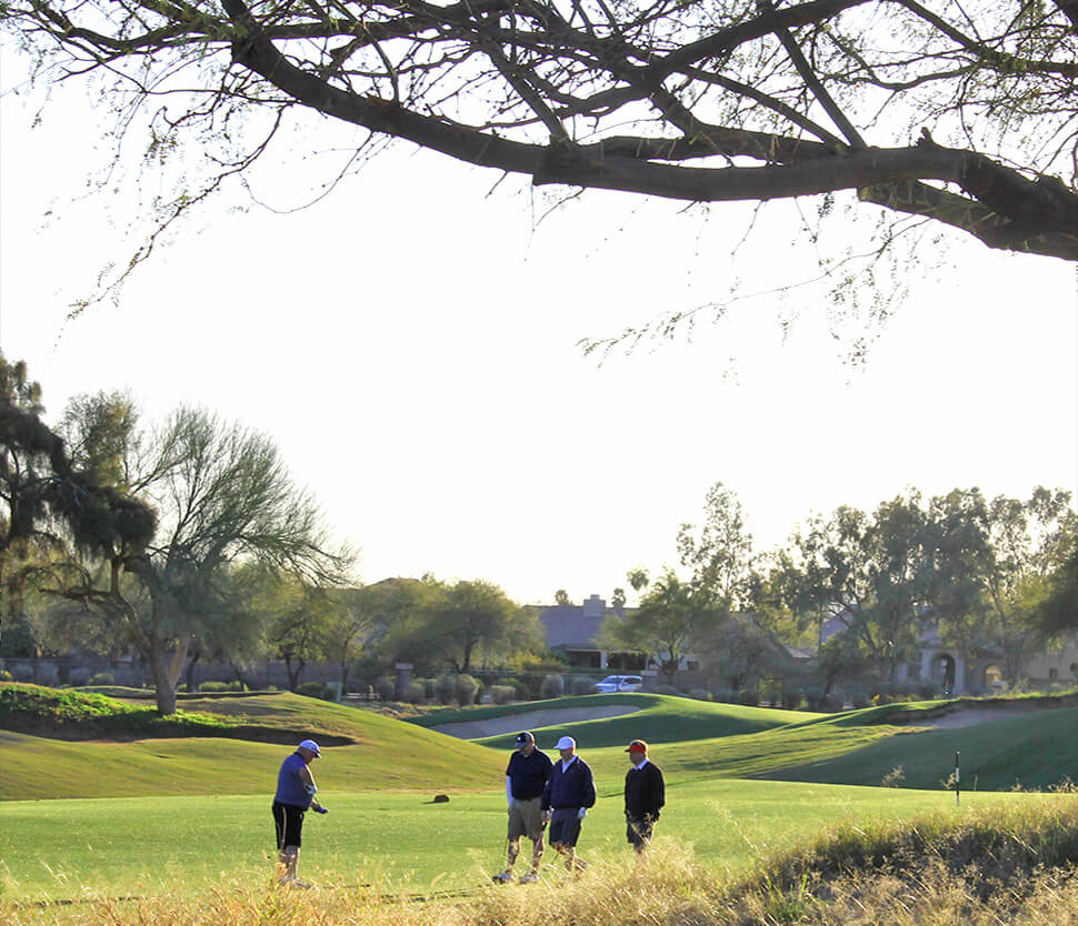 The Neighborhood Gold Course Scottsdale